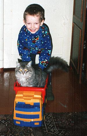 Нет, напрасно мы решили прокатить кота в машине.  Кот кататься не привык, опрокинул грузовик! Никита Колосов